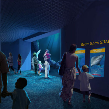 Georgia aquarium breaks ground on expansion 2020 4 1060x604