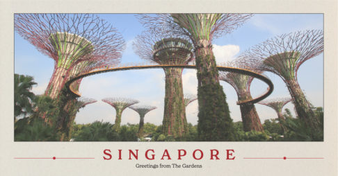 Pan-United Leads the Way with Low Carbon Concrete in Singapore Thumbnail